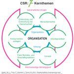Unternehmen können sich nach CSR und Nachhaltigkeit durch die Unternehmensberatung Stoll zertifizieren lassen